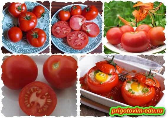 Сверхранний сорт помидор Аннета