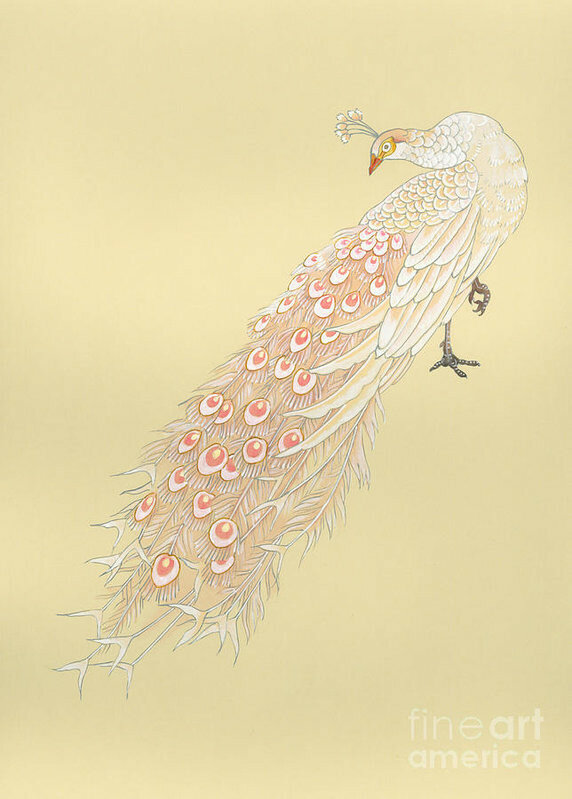 white-peacock-haruyo-morita.jpg