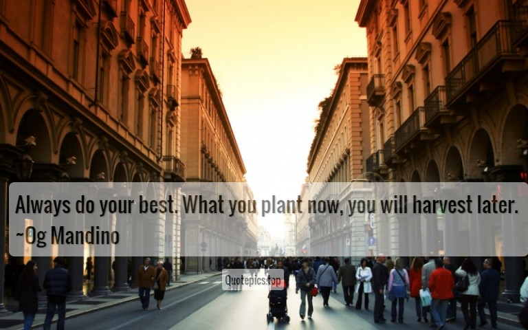 Always do your best. What you plant now, you will harvest later. ~Og Mandino