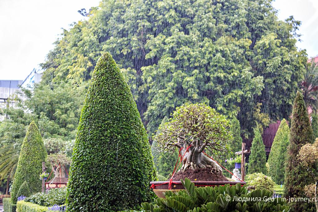 тропический ливень в таиланде