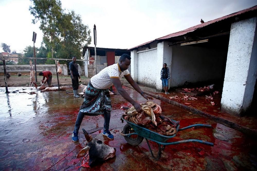 Эфиопский заклинатель гиен