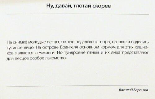 https://img-fotki.yandex.ru/get/226827/140132613.52e/0_21446d_7bb7587_L.jpg