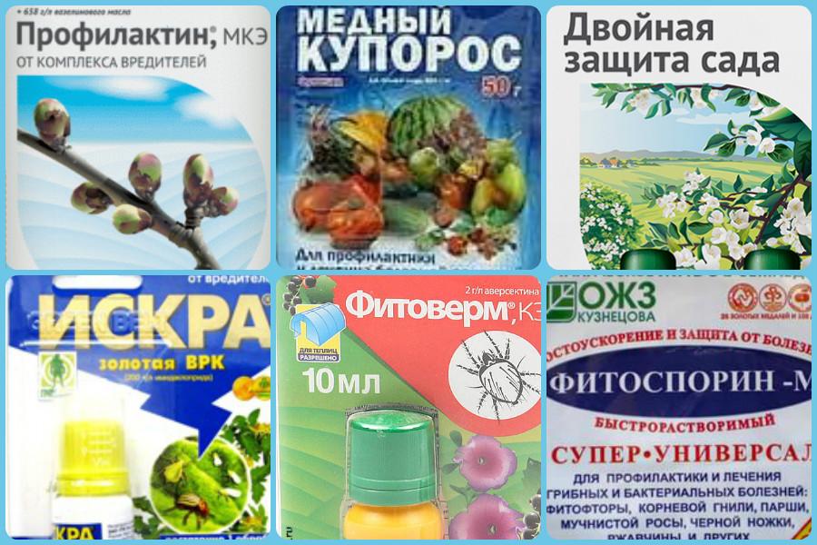 Препараты защиты