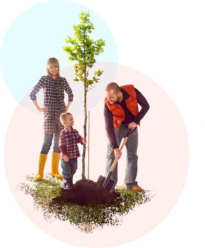 Принято за жизнь сделать три великие вещи - построить дом, вырастить сына и посадить дерево