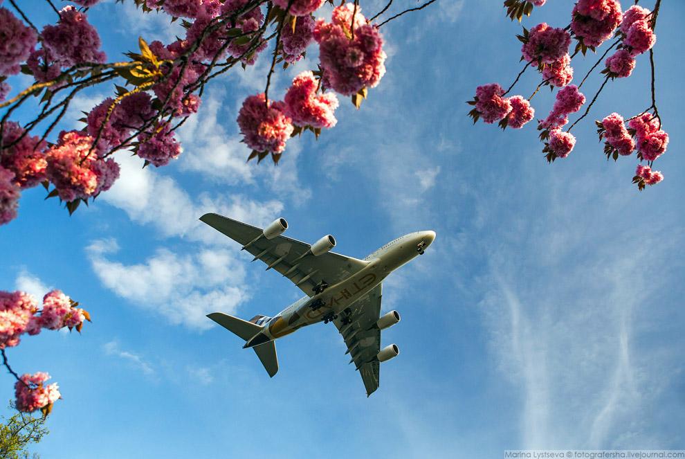 16. И Etihad — единственная авиакомпания, у которой на борту есть салон выше первого класса — р