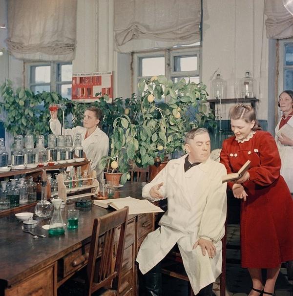 Павловские лимоны. Фото А. Рощупкина, 1952 год. В Павлове на Оке комнатные лимоны можно встретить ве