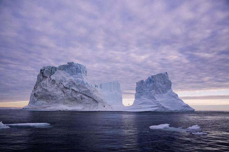 2. Знакомство с акулой. Азо?рские острова — архипелаг в Атлантическом океане, занимаемый одноимённым