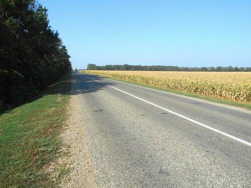 На шоссе ... DSCN4038.JPG