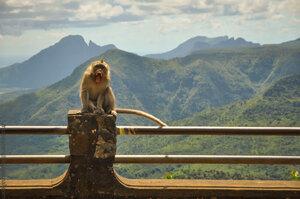 Mauritius-(10).jpg