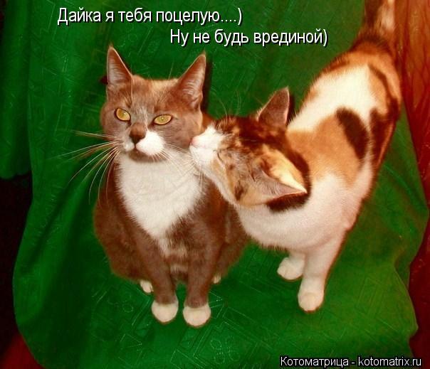 Дайка я тебя поцелую....) Ну не будь врединой
