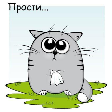 Прости меня! Кот с носовым платочком
