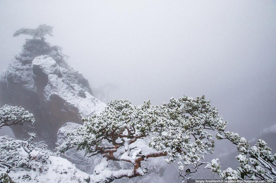 Смотрите « Рамонский рассвет » и « Весна в Карпатах ».  Понравилась статья? Расскажи друзьям