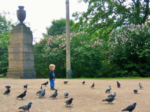 Боря и голуби 1.jpg