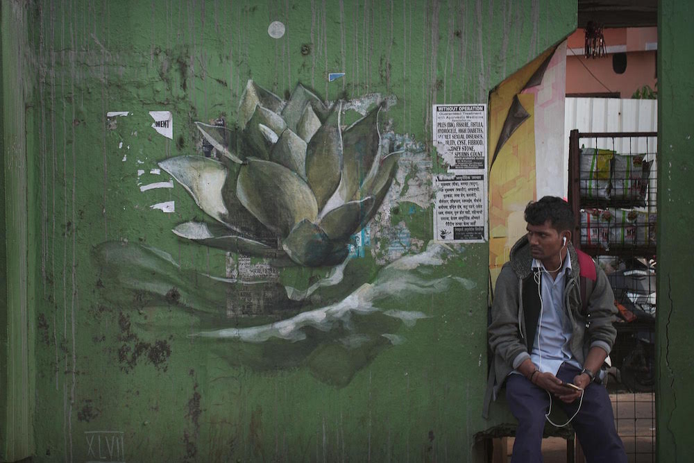 Lotus Blossoms by Faith47 Sprout on the Streets of Goa, India (7 pics)