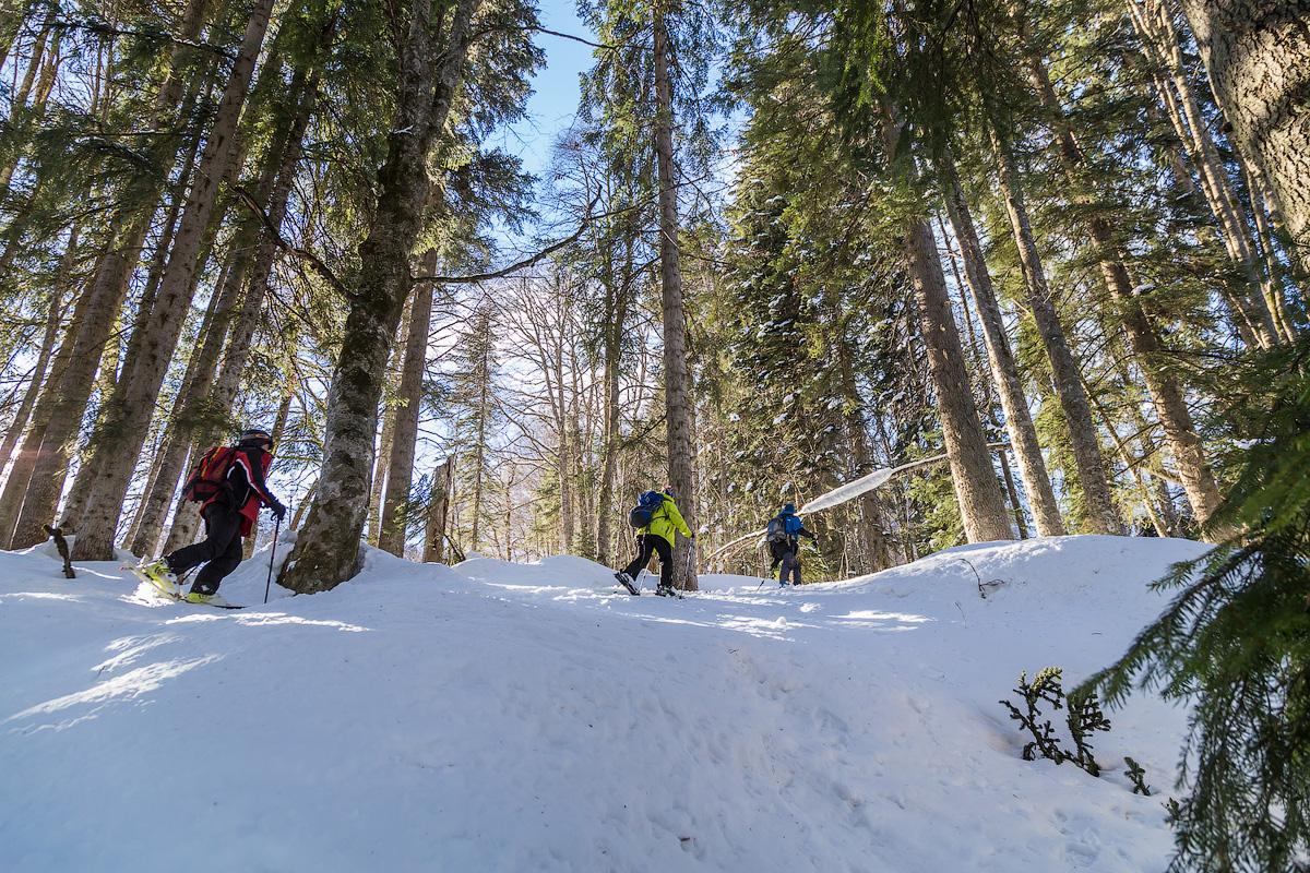 И еще немного видео про горы, лыжи и Красную Поляну.