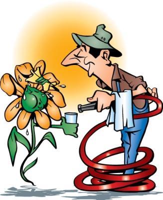Напои растения!