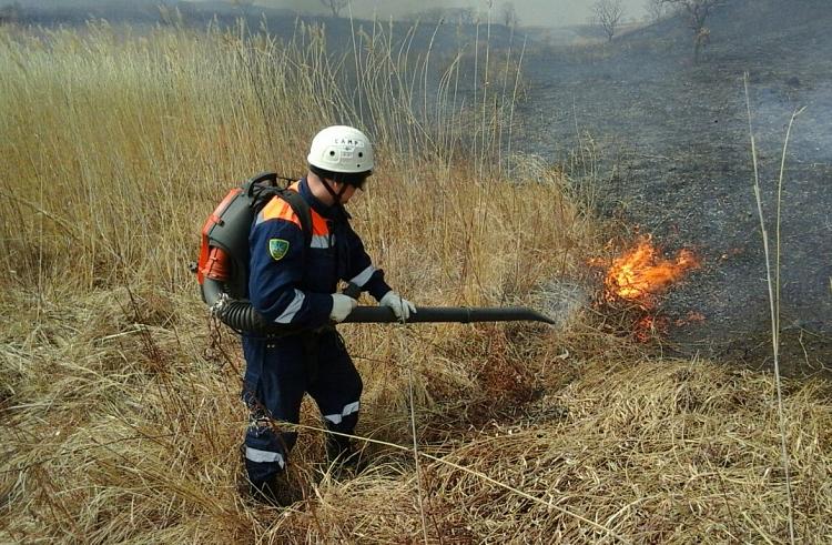 13 лесных пожаров потушили в Приморье за сутки