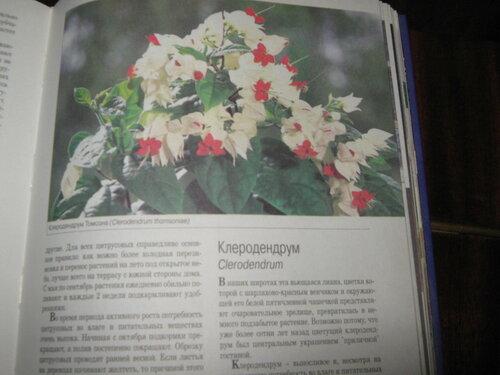 Записная книжка Натальи - Страница 5 0_1c2aa3_47d15589_L