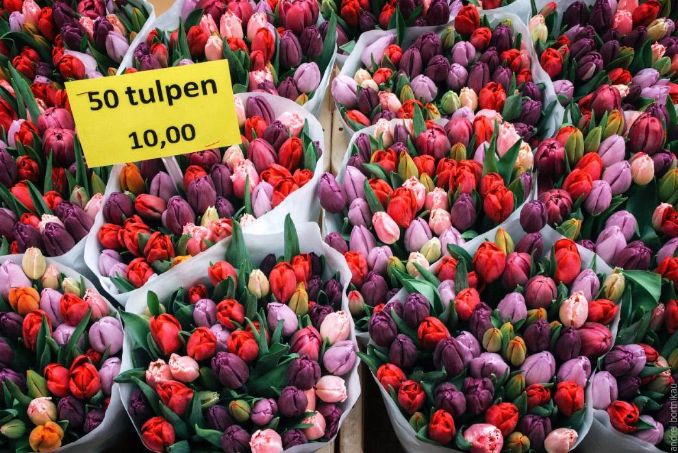 Какой Нидерланды без тюльпанов В общем, едем дальше. В парк Кёкенхоф. Обязательно весной, чтобы