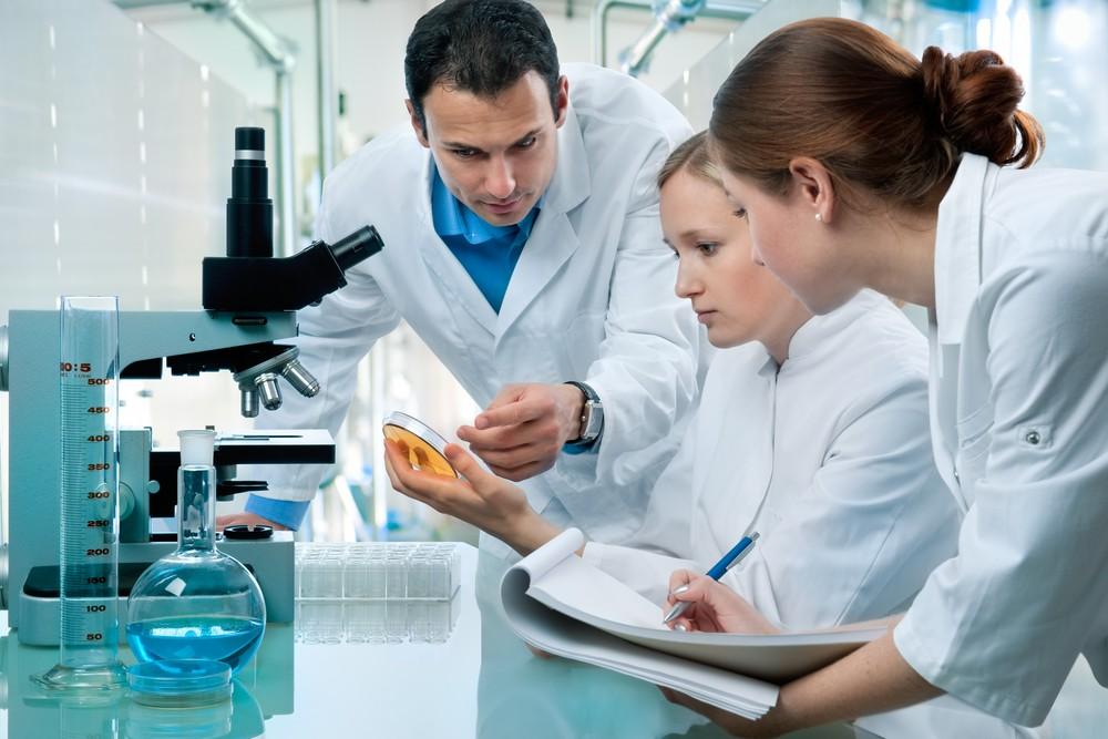 Менструальный цикл воссоздан влаборатории