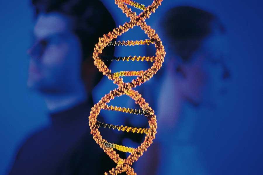 Гены умужчин иженщин работают поразному