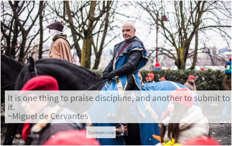 It is one thing to praise discipline, and another to submit to it. ~Miguel de Cervantes