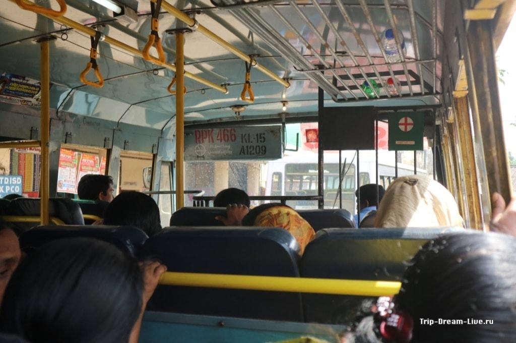 Мчим в Аллеппи на local bus'е