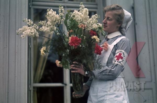 stock-photo-german-red-cross-nurse-drk-costume-flowers-paris-france-1940-hospital-12316.jpg