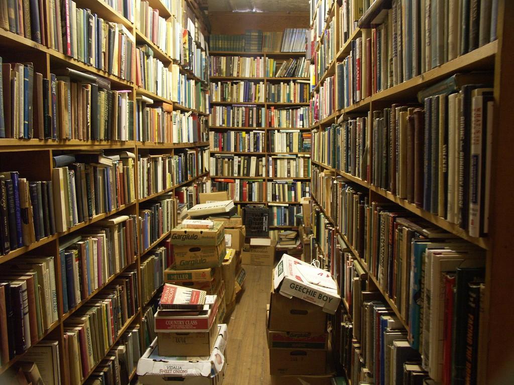 Почему GOOGLE не оцифровал все книги в мире?