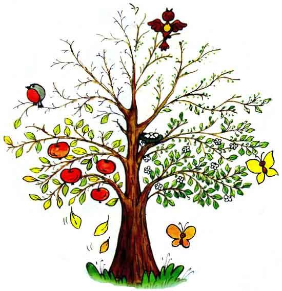 14 мая День посадки леса. Волшебство дерева