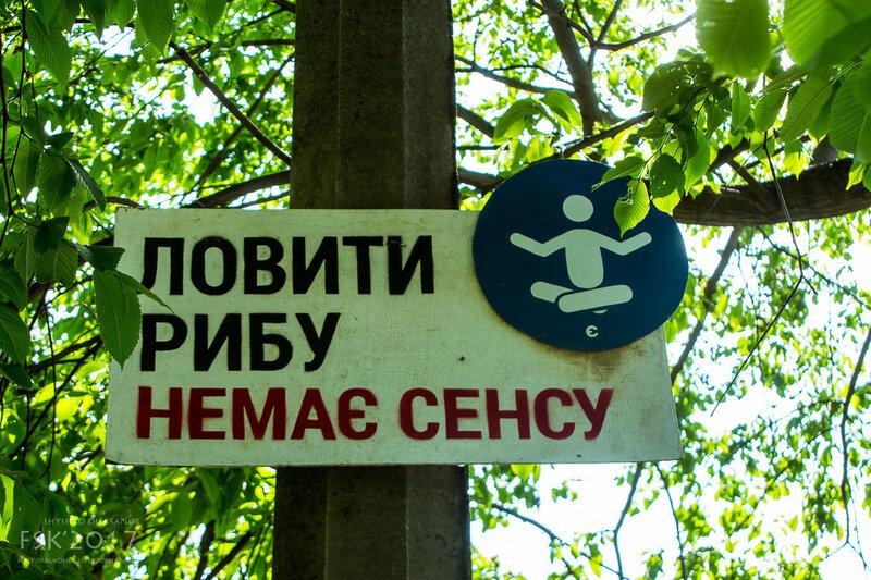nedilya-34.jpg