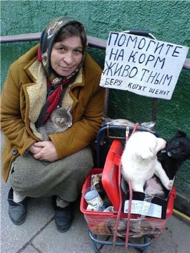 Бизнес на животных довольно выгоден. У «коробочников» несколько источников дохода: подаяния «на корм