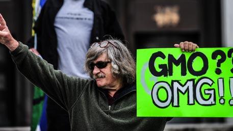 Русские академики хотят опровергнуть вред ГМО