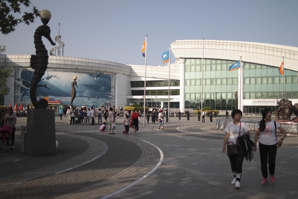 Китай, Пекин, океанариум
