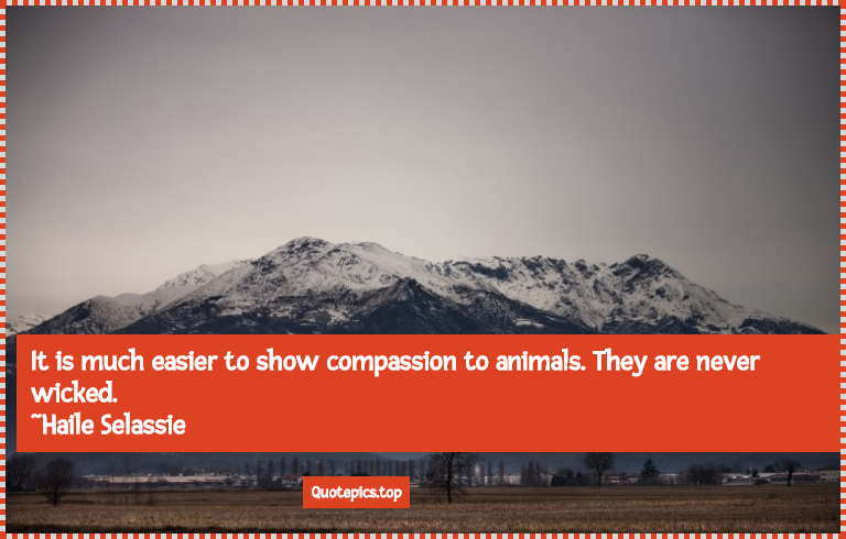 It is much easier to show compassion to animals. They are never wicked. ~Haile Selassie