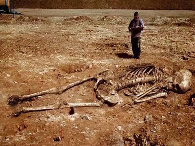 Найдены кости великанов