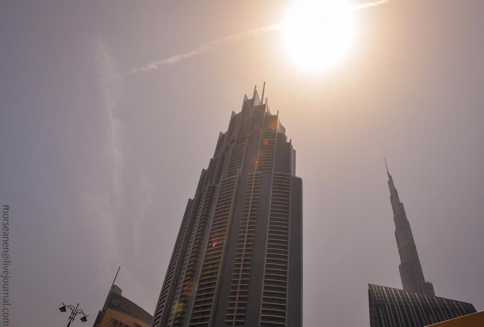 Dubai-Critic-(24).jpg