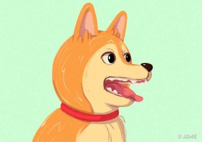Так собака защищает территорию. Часто так питомец ведет себя, когда кушает.