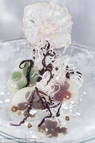 Метод ученого предусматривает погружение медузы в спирт, который извлекает из нее воду. «В течение п