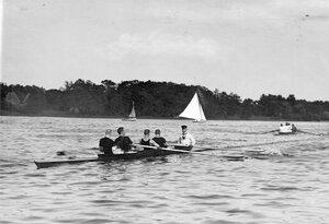 Общий вид лодок во время гонок у Крестовского острова.