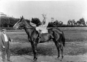 Лошадь Эрна, победитель Бородинского приза.