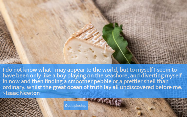 I do not know what I may appear to the world, but to myself I seem to have been only like a boy playing on the seashore, and diverting myself in now and then finding a smoother pebble or a prettier shell than ordinary, whilst the great ocean of truth lay all undiscovered before me. ~Isaac Newton