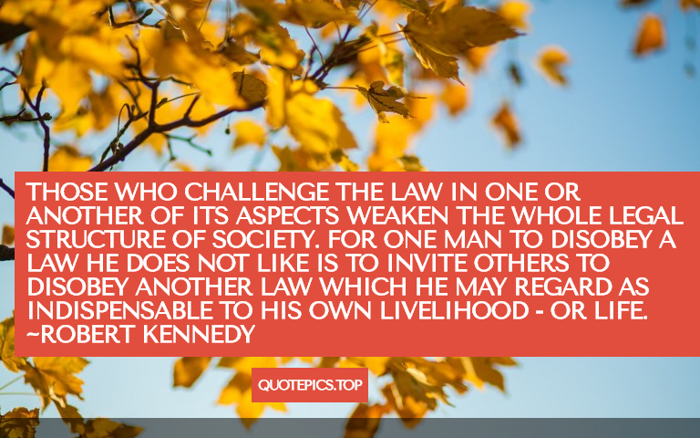 Those who challenge the law in one or another of its aspects weaken the whole legal structure of society. For one man to disobey a law he does not like is to invite others to disobey another law which he may regard as indispensable to his own livelihood - or life. ~Robert Kennedy