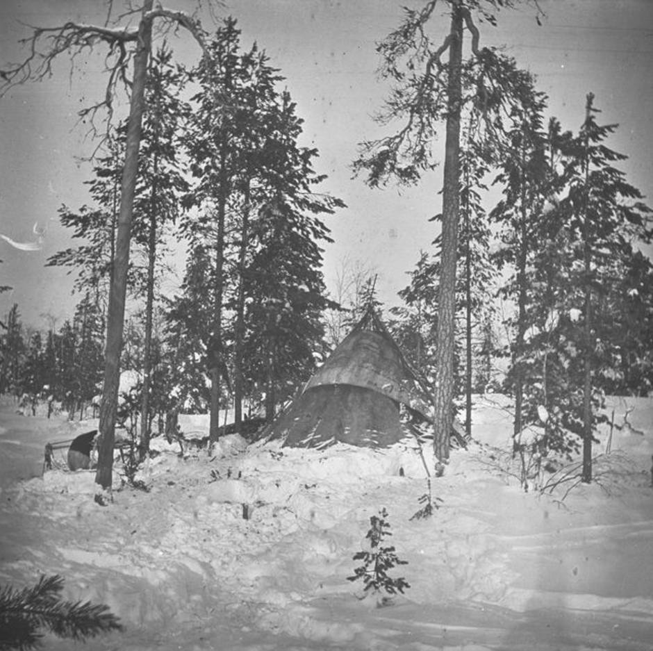 92. Хижина Кая Доннера в лесу, на холме, недалеко от края тундры