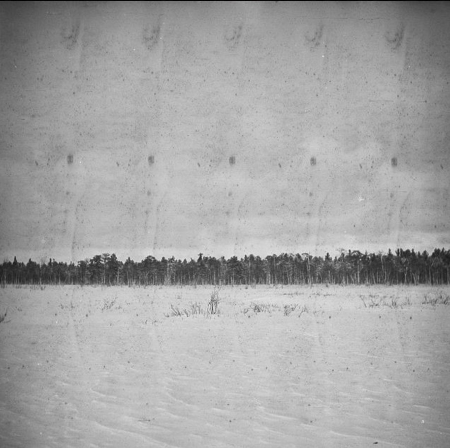 193. Заснеженное болото