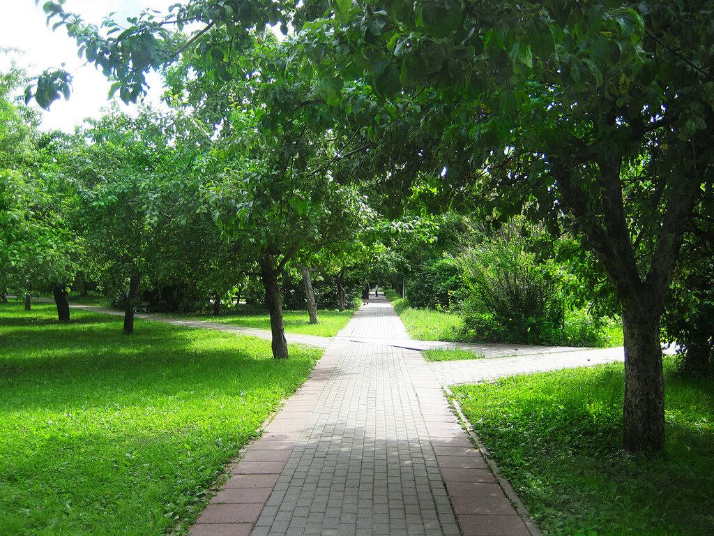 парк58.jpg