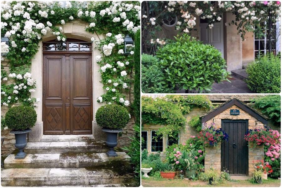 15 вариантов оформления входа в дом цветами
