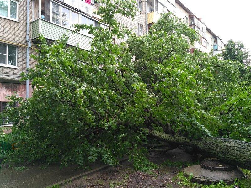 Сегодняшний шторм во Владимире