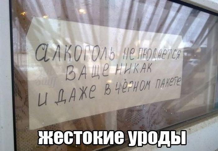 Картинки с подписями