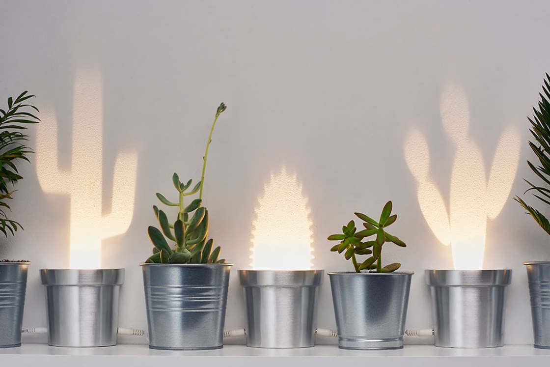 Cactus Lamps – These creative lamps project luminous cactuses (11 pics)
